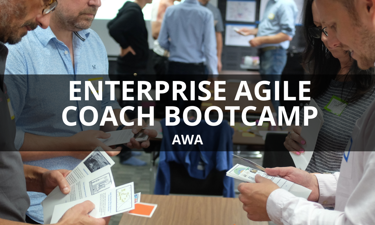 Enterprise Agile Coach