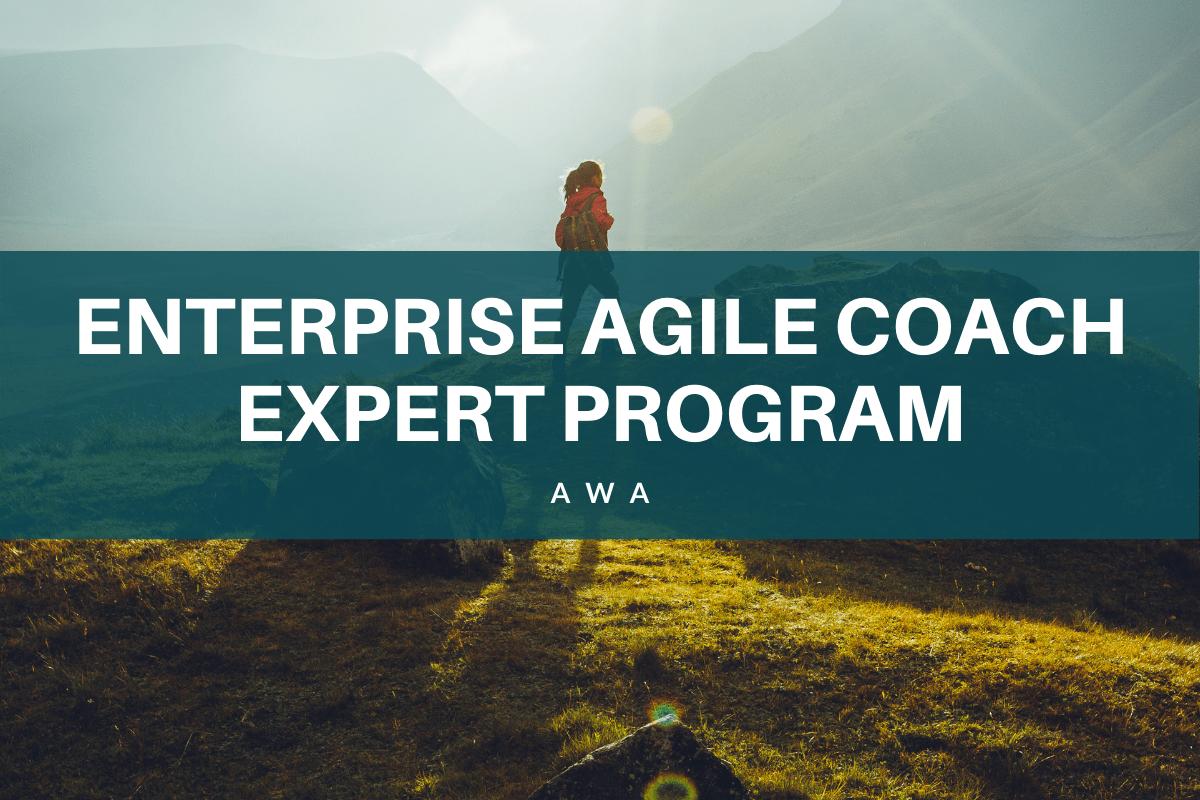 Expert Enterprise Agile Coach ICE-EC