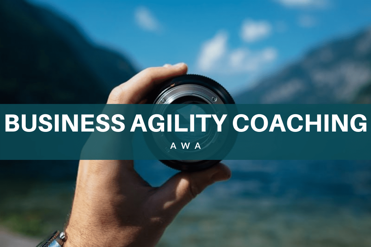 Business Agility Coaching